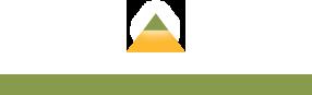Washington D.C. logo